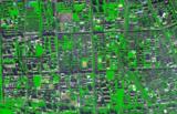 基于高分辨率影像的城市绿地信息提取